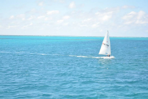 ヨットの写真
