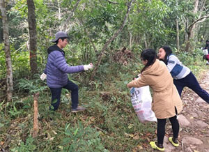 Cleaning of the local forest park